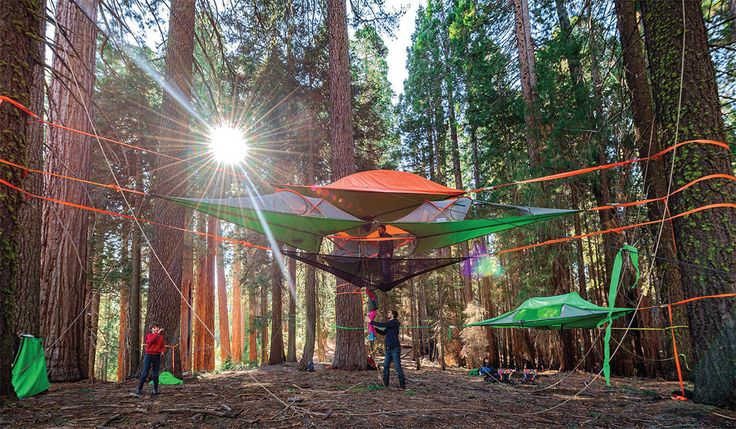 For truly unique camping accommodations, Tentsile\u0027s \u0027portable treehouses\u0027 enable you to sleep in comfort up among the trees.
