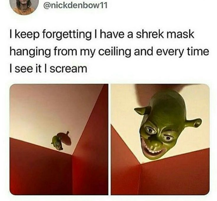 WhY DO YOU HAVE A SHREK MASK HANGING FROM YOUR CEILING