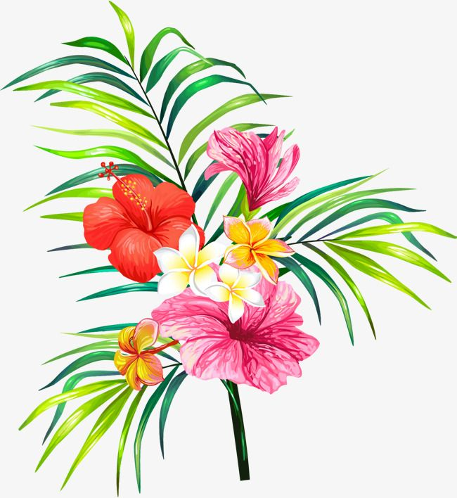 Vector Hand Painted Flowers Vector Diagram Hand Flower Png And