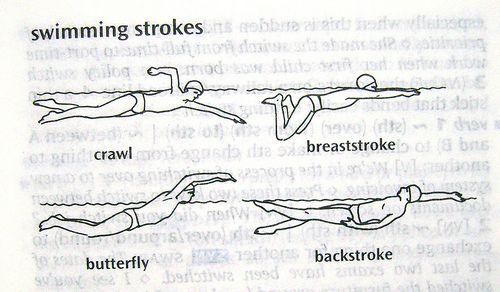Swimming Strokes | Writing- Infographics | Pinterest | Swim ...