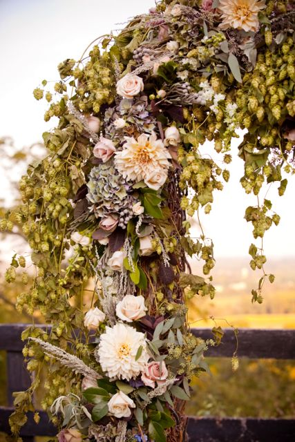 ceremony arch with hops garland - I like the way flowers have been added to the hops
