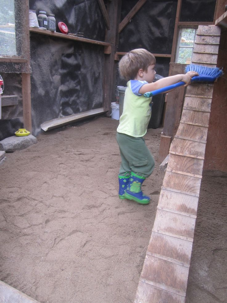 Using sand instead of straw or shavings for chicken house bedding