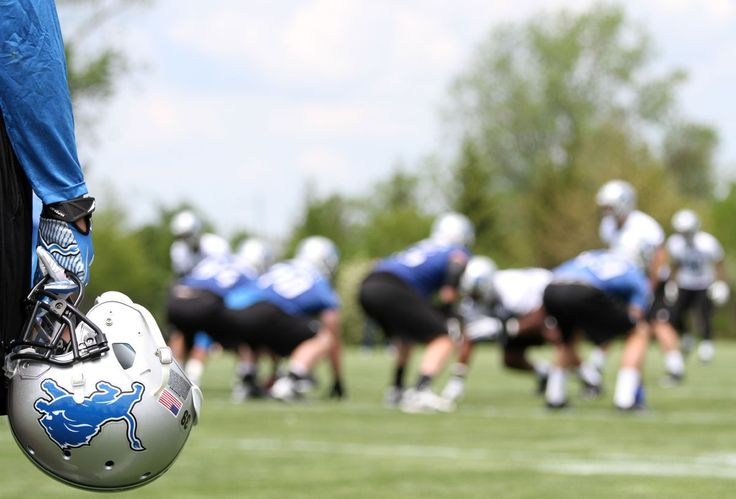Meet the 2014 Detroit Lions roster