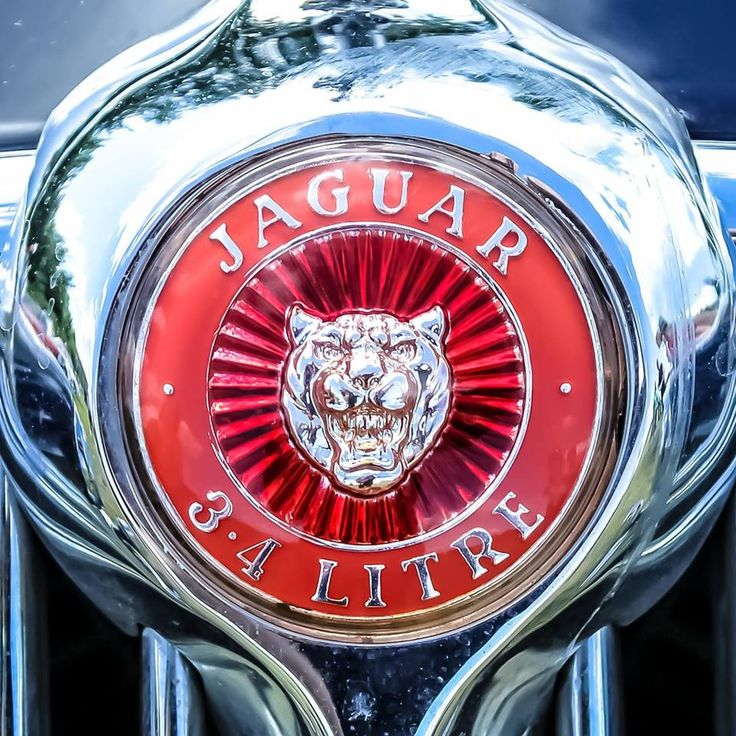 #logotipo #logo #jaguar