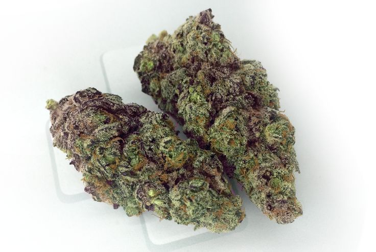 20 best interesting strains images on pinterest buy weed