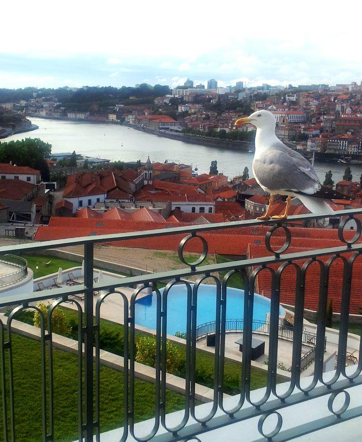 What a great view ! #theyeatman #portoholidays #porto