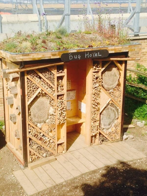A bug hotel with a green roof !