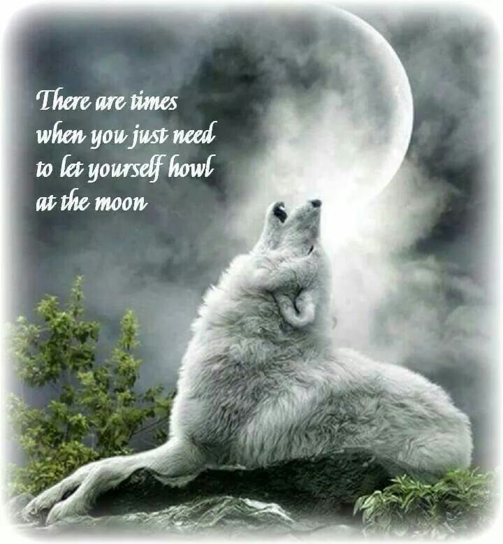 There Are Times When You Just Need To Let Yourself Howl At