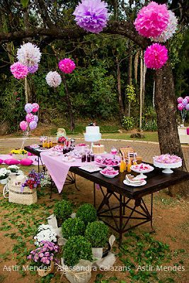 For you special parties: Picnic Theme