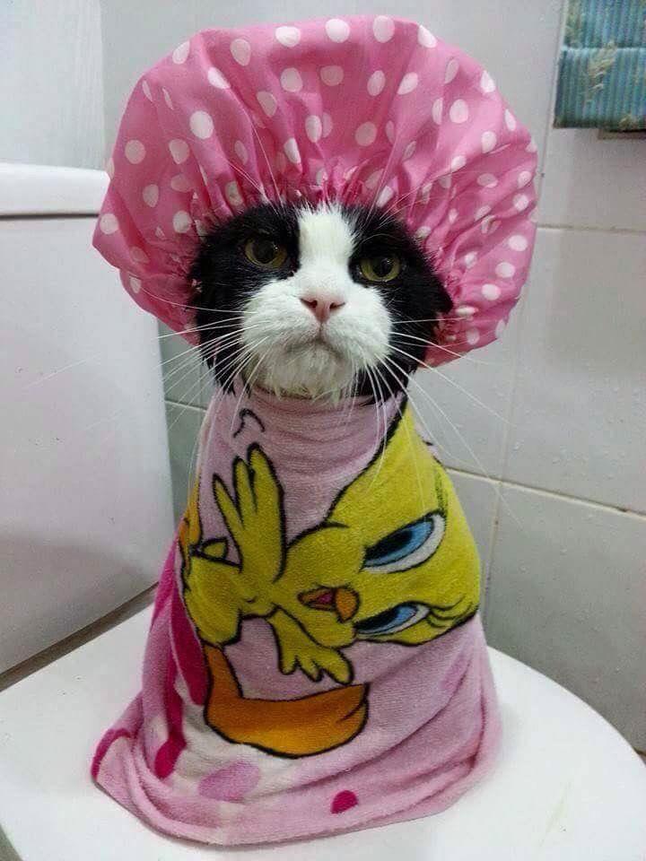 In mijn sas met badedas
