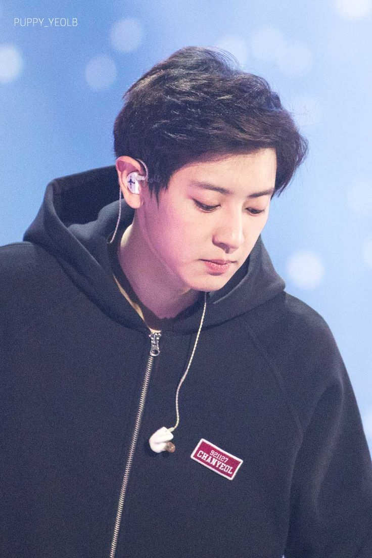 EXO PLANET #4 - The EℓyXiOn - Day 1 - CHANYEOL.