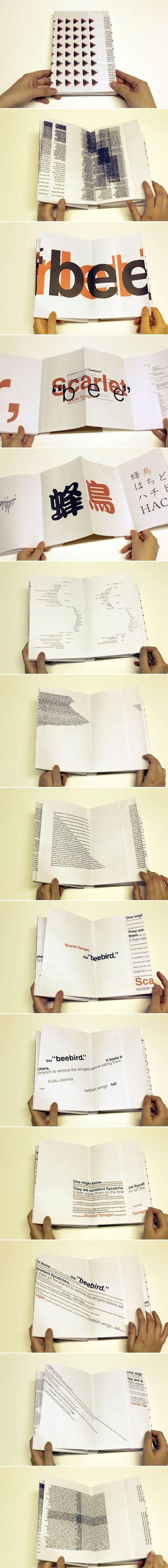 Book Design: Experimental Typography