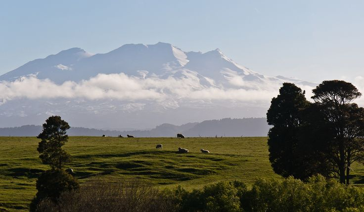 The striking silhouette of Mount Ruapehu rising from the clouds might make it hard to fix your eyes on the road. Image by Jason Pratt / CC BY 2.0
