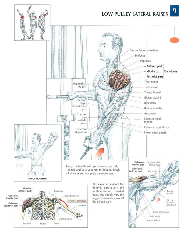 Low Pulley Lateral Raises