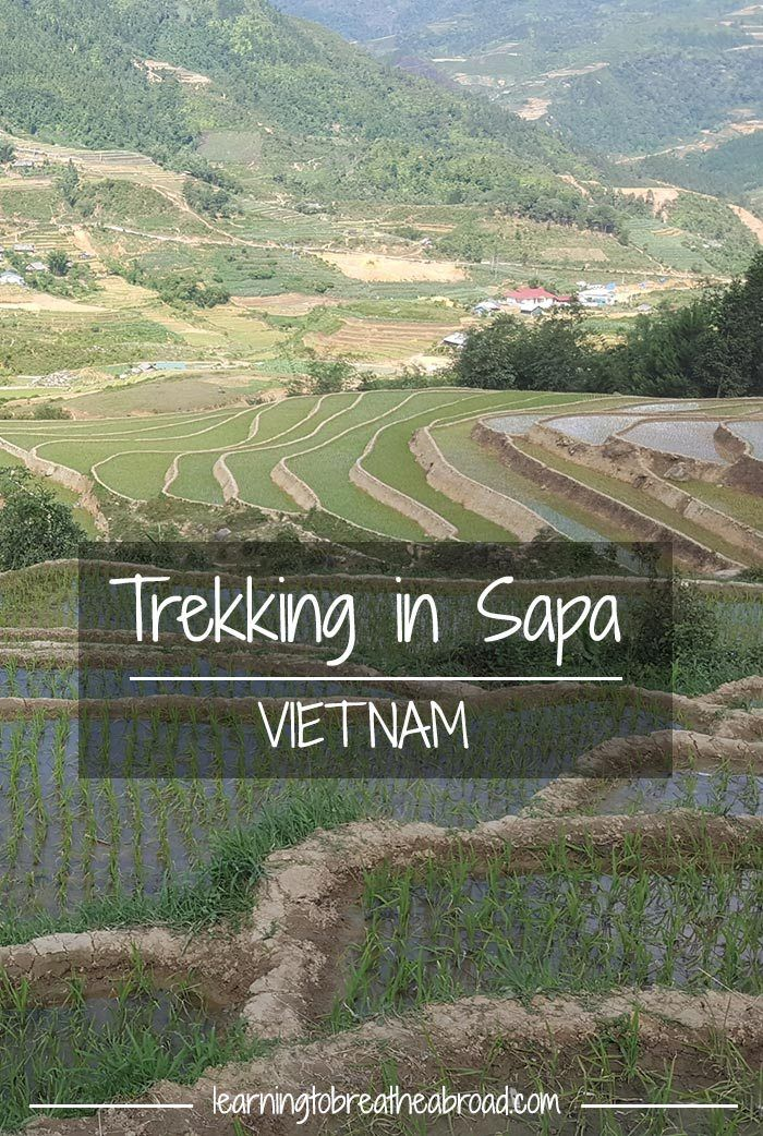 Trekking in Sapa Vietnam |  Trekking in Vietnam | Homestay in Sapa Vietnam | Sapa Vietnam Travel | Sapa Trekking Vietnam | Things to do in Vietnam | Things to do in Sapa