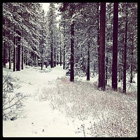 Lake Tahoe weather: Storm dumps more than 2 feet of snow | TahoeDailyTribune.com May 21, 2014