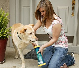 Paw wash for the dogs — wonder if this really works!