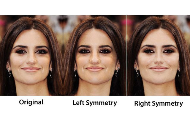 Perfect Facial Symmetry 4