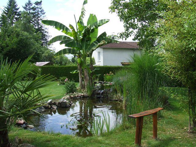 Plus de 1000 id es propos de bassin de jardin sur for Bassin naturel de jardin