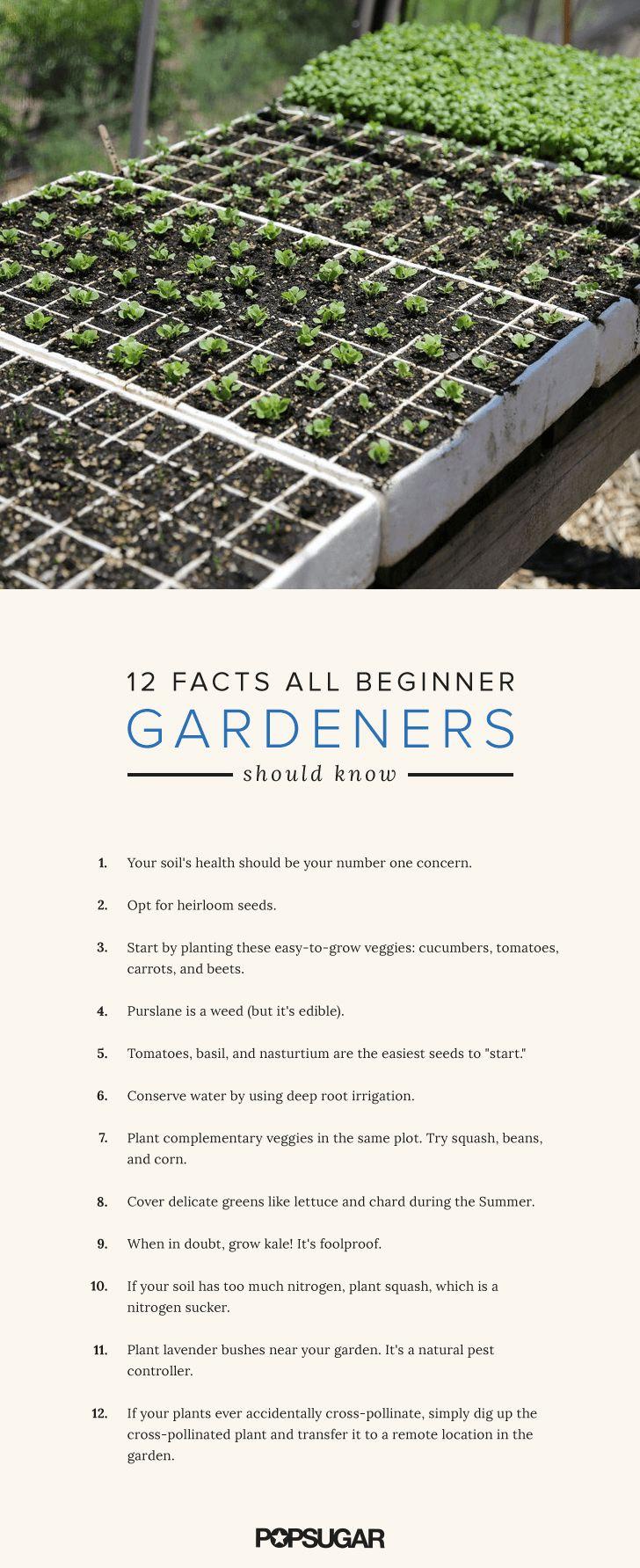 12 Intriguing Facts All Beginner Gardeners Should Know. Organic GardeningIndoor  ...