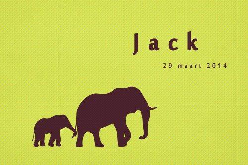 Geboortekaartje jongen - Olifanten - Pimpelpluis - https://www.facebook.com/pages/Pimpelpluis/188675421305550?ref=hl (# simpel - eenvoudig - retro - naam - dieren - origineel - geel - groen - silhouette - olifant - broer)