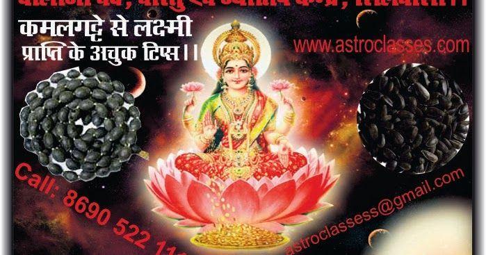 कमलगट्टे से लक्ष्मी प्राप्ति के कुछ अकाट्य टिप्स ।। Astro Classes, Silvassa. ~ Balaji Vedic Sahitya Sangrahalaya, Balaji Ved Vidyalaya. Silvassa.