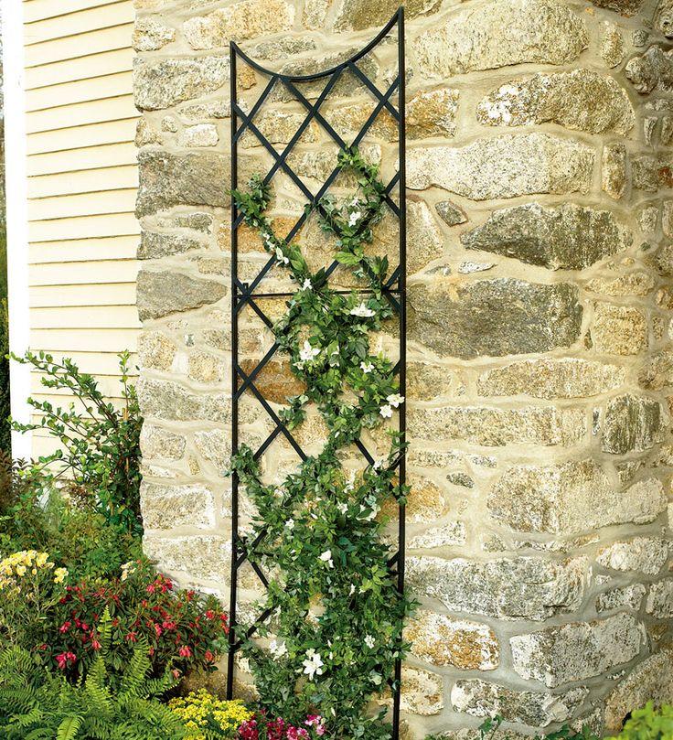 92 best garden trellis arbor images on Pinterest | Wrought iron ...