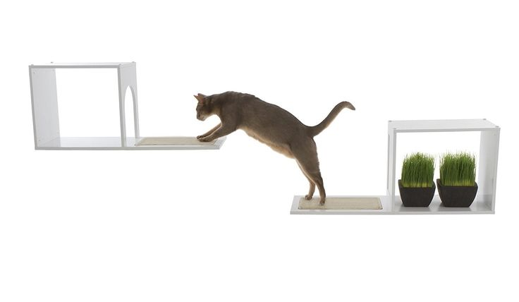 Amazon.com : The Sophia Wall Mounted Cat Tree in White : Modern Cat : Pet Supplies