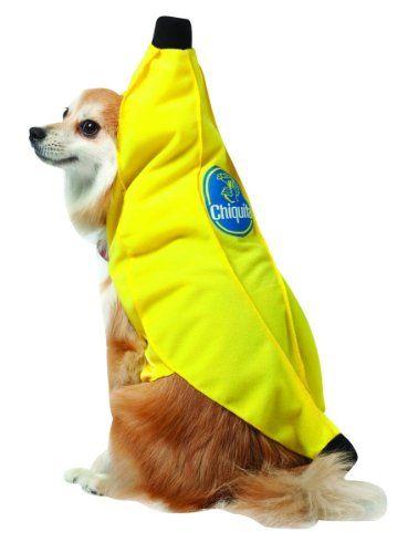 Rasta Imposta Chiquita Banana Dog Costume, Medium Rasta Imposta (SIOIA) http://www.amazon.com/dp/B007O1V8EA/ref=cm_sw_r_pi_dp_veBmwb1517SBA