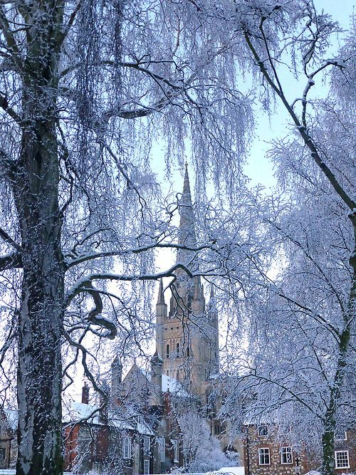 Norwich Cathedral, Norfolk, England (by mira66)
