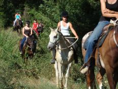 Active holiday Italy horseriding
