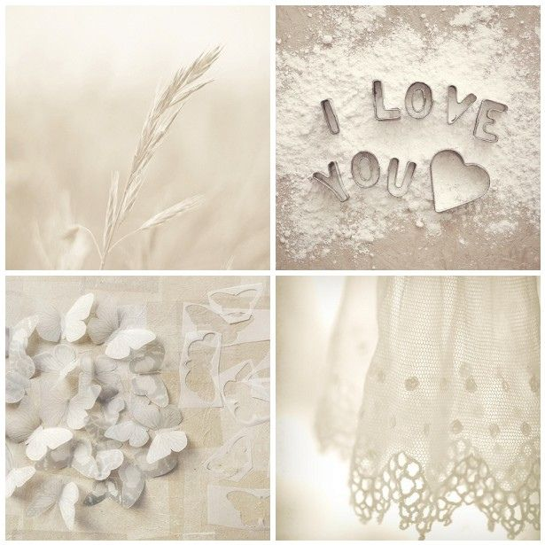 Love all shades of White: Blanc Whit, Whiter Shades, Shabby Studios, Photos Inspiration, Shades Of White, White Collage, Black White Cream, White Cream Ivory, Ahh White