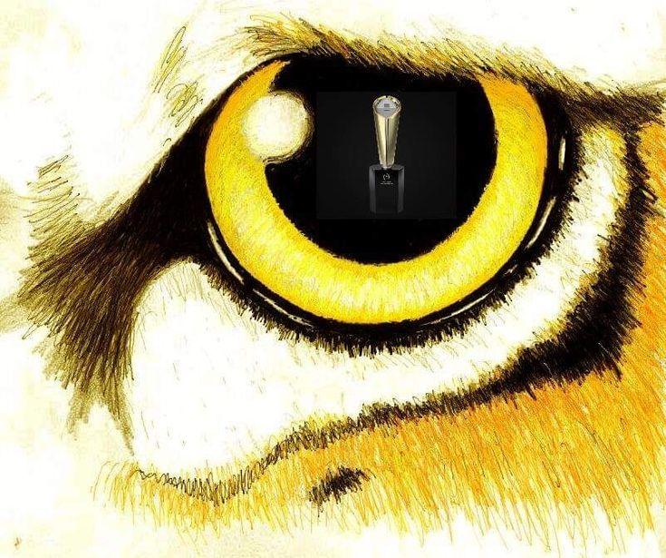 helm tigers eye repeat - 735×615