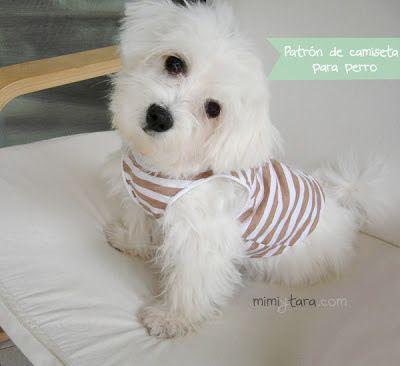 Este blog tiene los patrones más divertidos que he visto para confeccionar trajes de perros!! :D