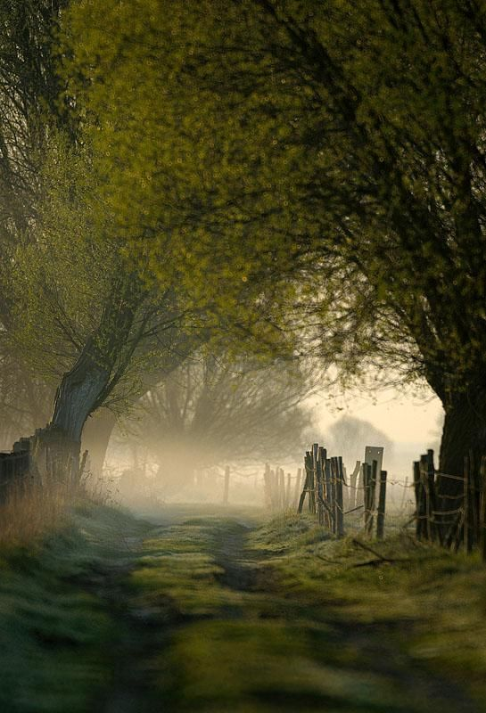 Morning in the atmospheric countryside of the Lake District, Cumbria
