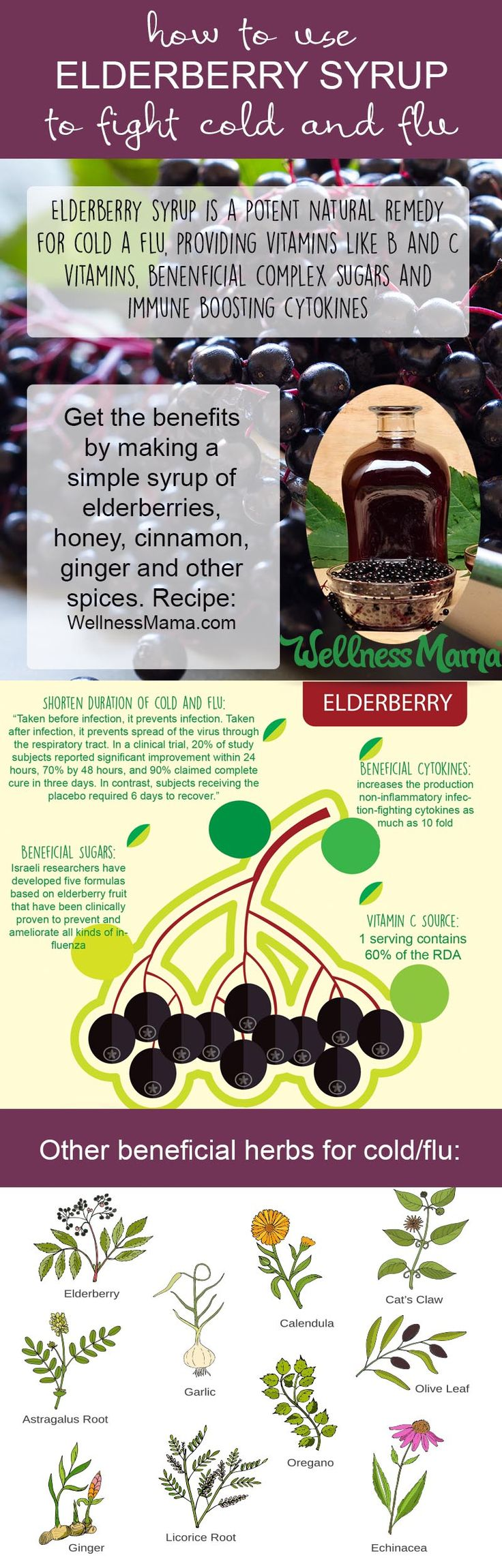How to Make Elderberry Syrup (Potent Cold + Flu Remedy)