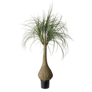 Les 25 meilleures id es de la cat gorie plantes for Palmier artificiel ikea