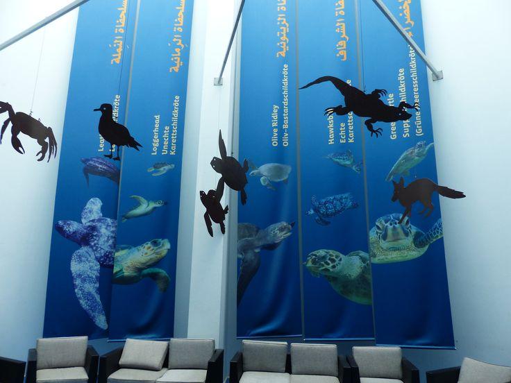 Das Museum im Turtle Beach Resort, Oman, ist nicht nur für Kinder hochinteressant - ganz zu schweigen von den abendlichen Ausflügen zu den Schildkröten