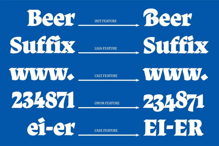 Type and Media is an intensive one-year masters course in type design held at The Royal Academy of Art, The Hague in the Netherlands. These are the final graduation projects from the 2013 class.