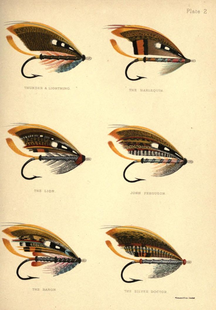 Plate 2: Thunder & Lightning, The Harlequin, The Lion, John Ferguson, The Baron  & The Silver DoctorInstruction Fly No. 1, Forming the Butt, George Kelson - The Salmon Fly 1985
