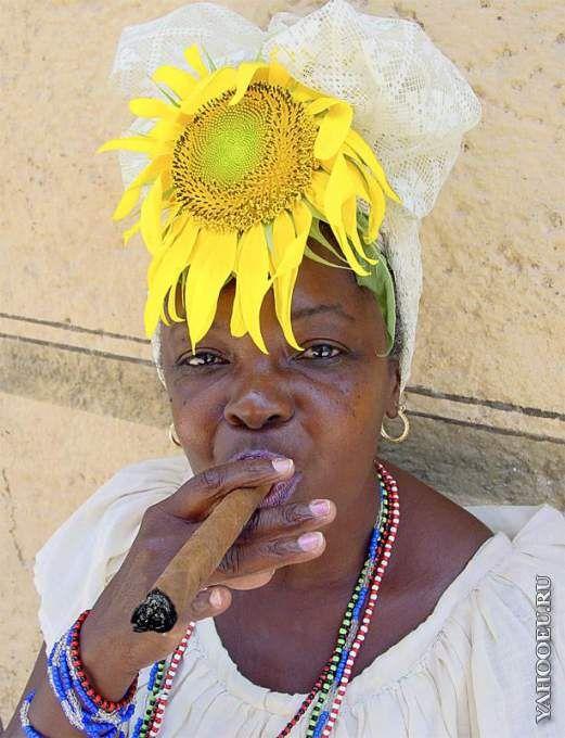 Куба прикольные картинки, пони для