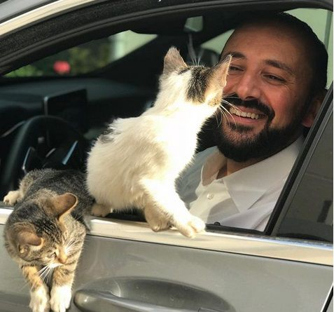 Divided along national identity, religion and secularism, and ethnicity, Turkish people found a unity on loving cats, with stories of their kindness to the pets popping up every now and then.