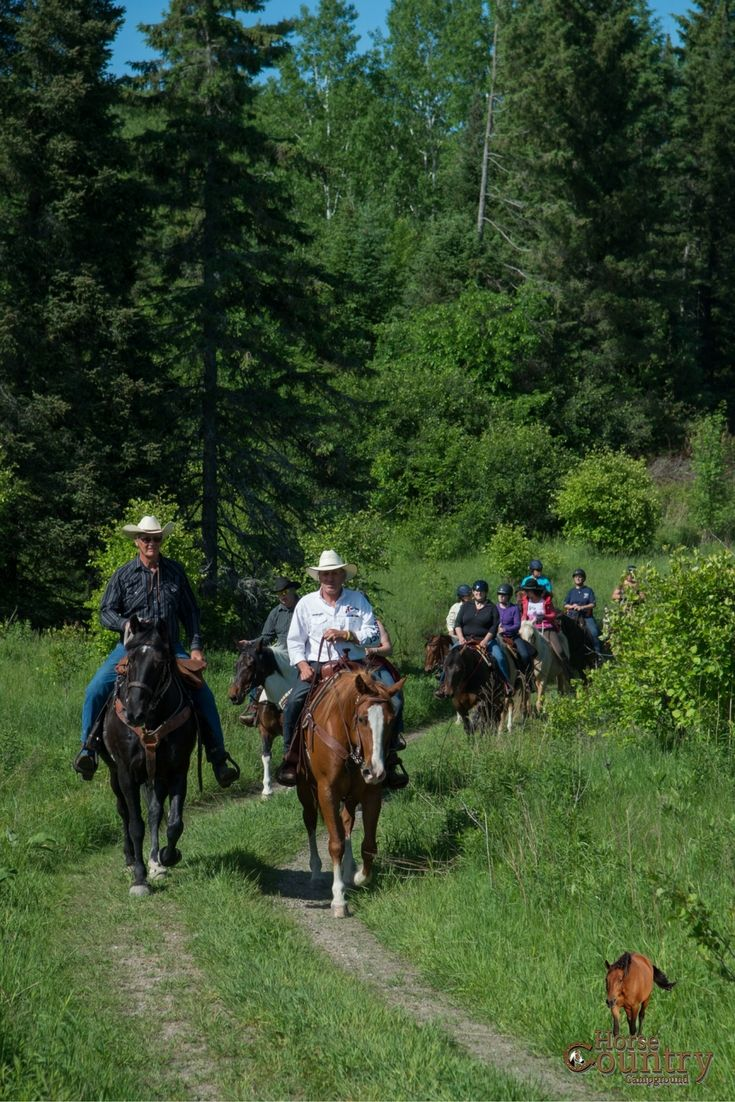 Horseback riding at Horse Country Campground, City Slicker 3 day adventures and more.
