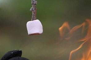 Easy Campfire Recipes for Kids -- There is a nice roasted apple idea in this article.