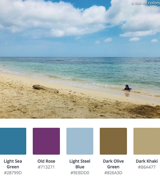 Ocean Photos With Color Palettes To Inspire Your Coloring Book