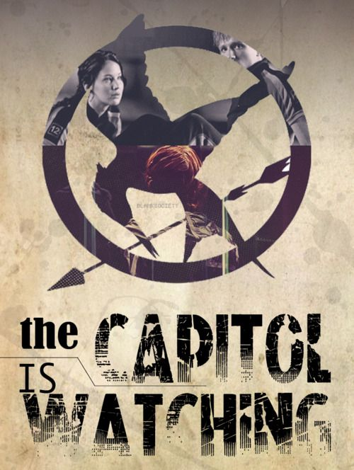 The Capitol is watching: Catch Fire, Hunger Games Catch, The Hunger Games, Hunger Games Trilogy, Books Worth, Games Lessons, Watches Hunger, Fans Art, Games Fandom