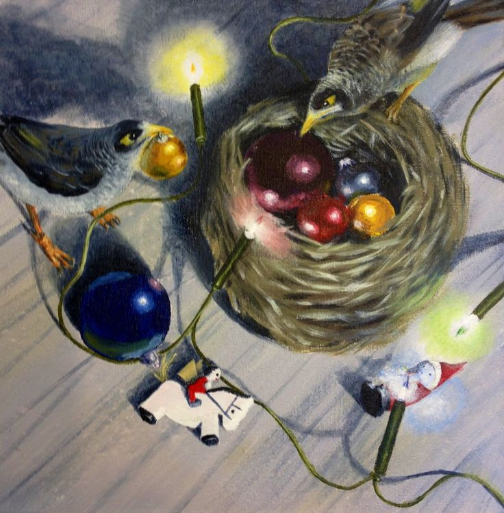 Noisy miners find Christmas appealing
