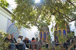 café de la mosquée de paris