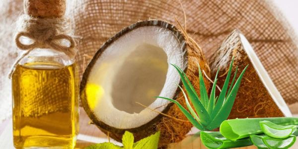 تجربتي مع الصبار لفرد الشعر الصبار للشعر تجربتي Aloe Vera Gel Skin Whipped Coconut Oil Lotion Aloe Vera Gel Moisturizer