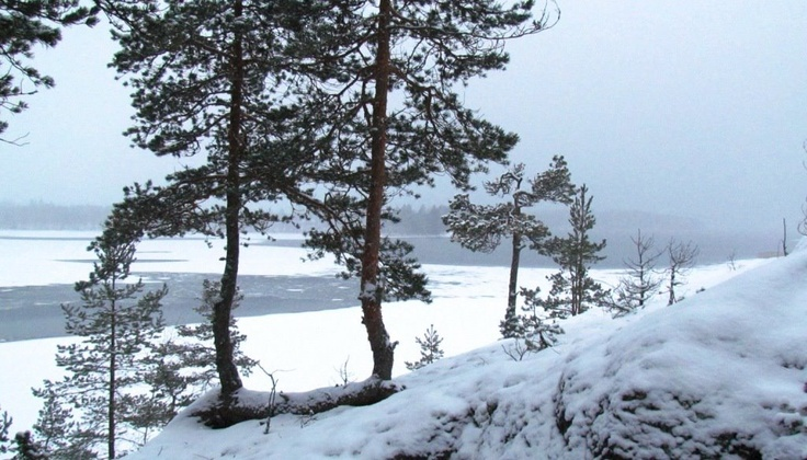Winter day at Saimaa.